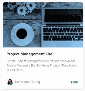 Project Management Lite Course