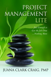 Project Management Lite Book Cover
