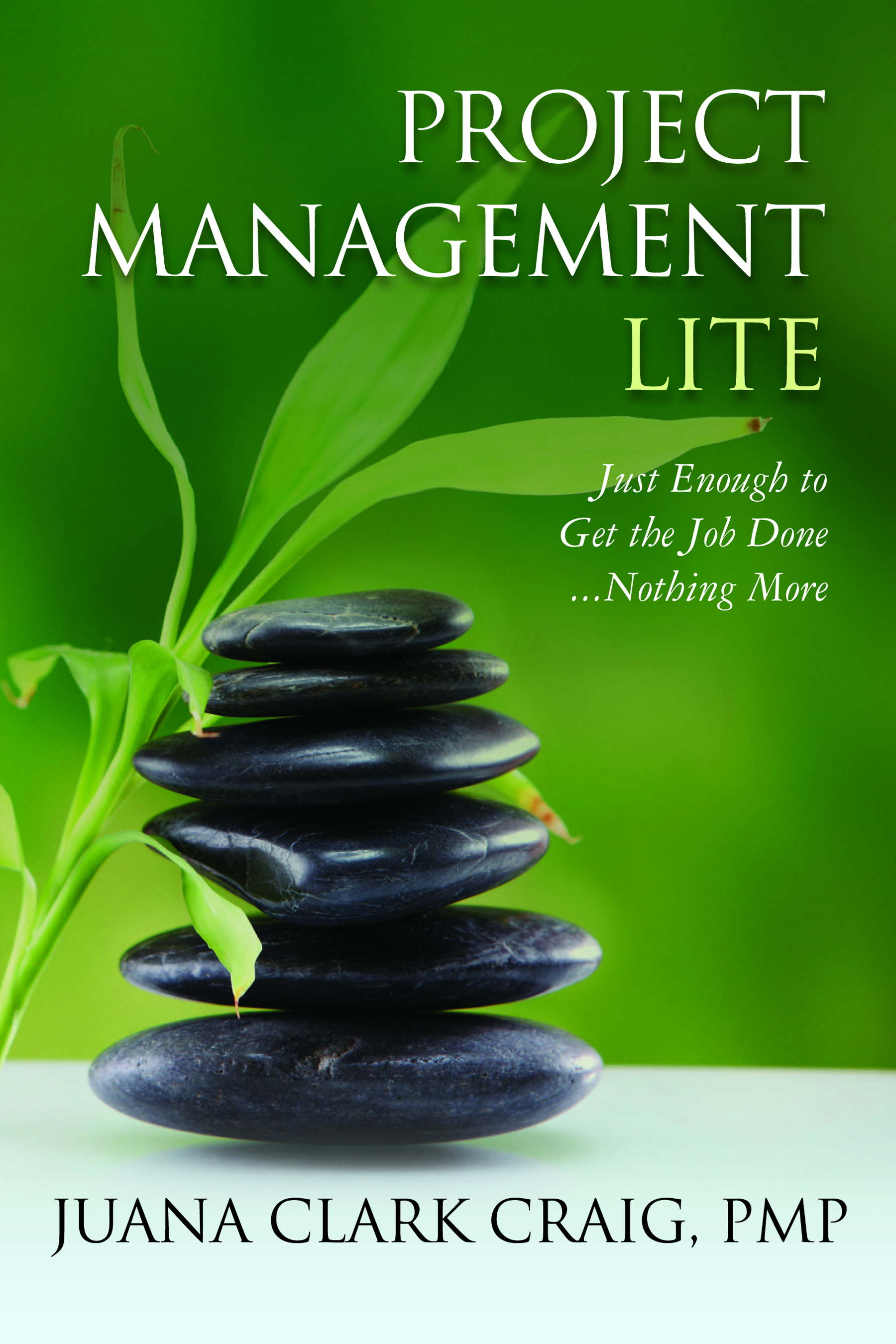 Simple Book Cover Jobs : Just enough to get the job done project management lite
