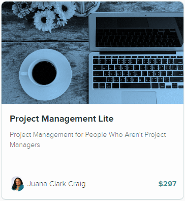 Project Management Lite Course